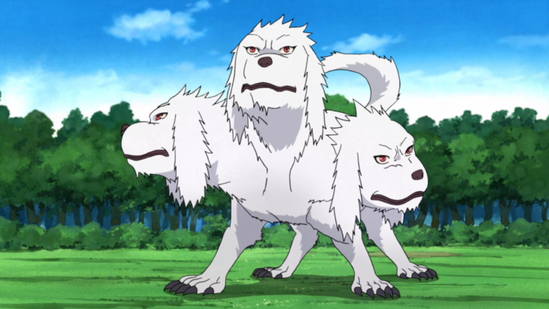 Смешанная Трансформация Человека Зверя — Трёхглавый Волк
