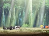 Naruto Shippūden - Episódio 388: Meu Primeiro Amigo