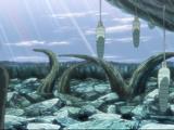Naruto Shippūden - Episódio 426: O Tsukuyomi Infinito