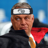 Orban viki