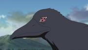 File:Sharingan crow.png