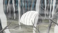 File:Cloth Dome.png