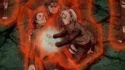 Sakura heals Shikamaru