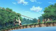 Iruka cai no treinamento