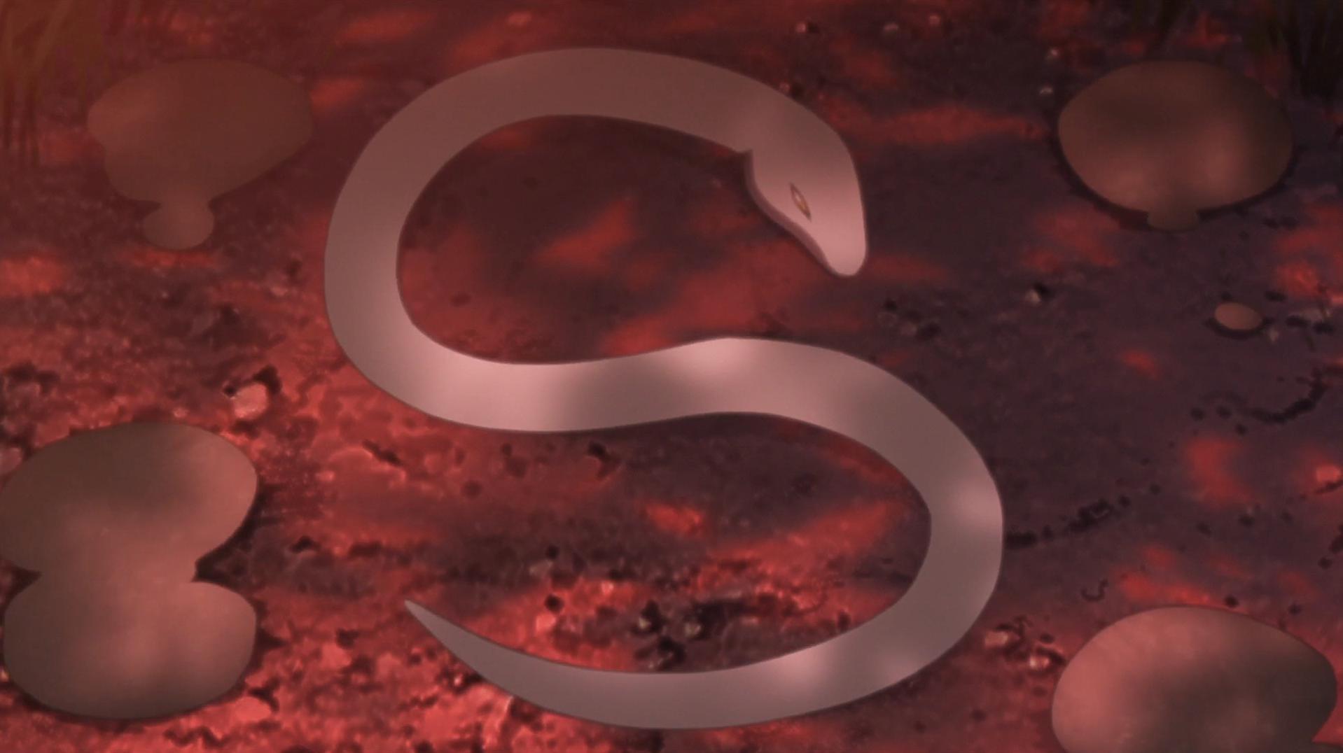 La Volonté de Mitsuki