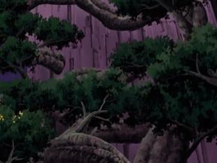 ...e cria uma floresta.