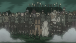 Allied Forces jutsu.png