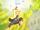 Arte Sabio: Rasen Shuriken de Ácido y Burbujas