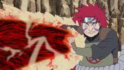 Choza stops Kinkaku tail