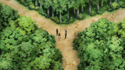 File:Separate Paths.png