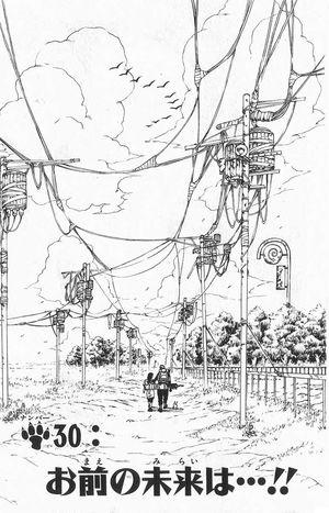 Naruto Capitolo 30