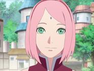 Sakura p3