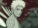Naruto Shippūden - Episódio 378: O Jinchūriki do Dez-Caudas