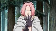 File:Sakura's Resolve.png