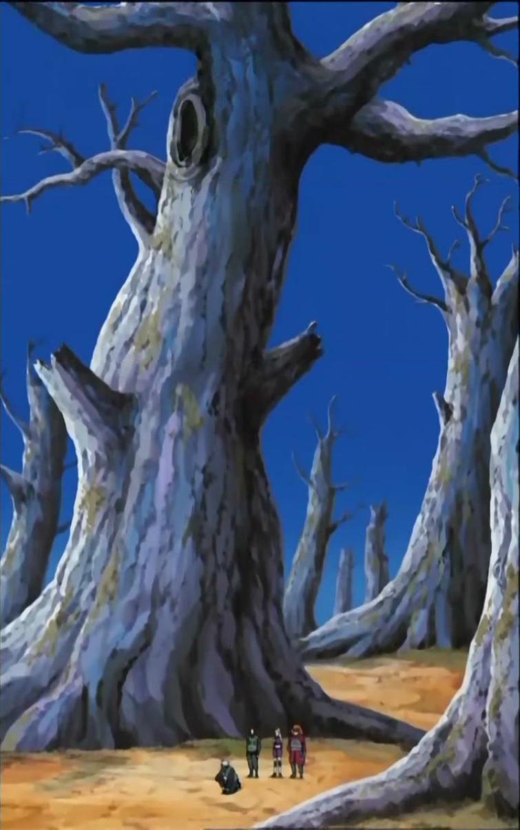 Bosque de Árboles Petrificados