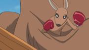 File:Little Kangaroo.png