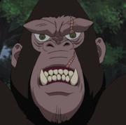 File:King anime.png