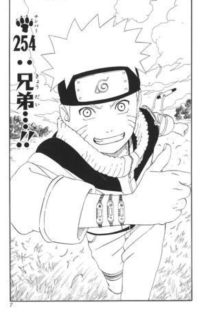 Naruto Capitolo 254