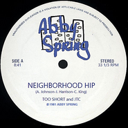 Neighborhood Hip 12 inch single