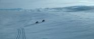 Canadian Arctic 01