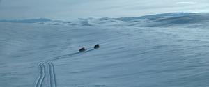 Canadian Arctic 01.png