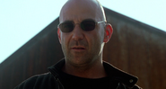 Shaw Sunglasses