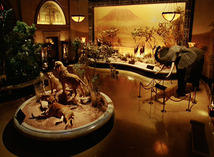 Hall of African Mammals