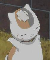 Zoku nyanko-bandage2