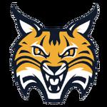 Quinnipiac Bobcats.png