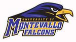 Montevallo Falcons.jpg