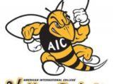 American International Yellow Jackets