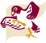 Fairmont-State-Falcons.jpg