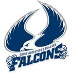 St. Augustine's Falcons.jpg