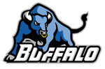 Buffalo Bulls.jpg