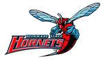 Delaware-State-Hornets.jpg