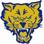 Fort Valley State Wildcats.jpg
