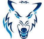 Northwood Timberwolves.png