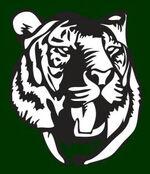 Salem International Tigers.jpg