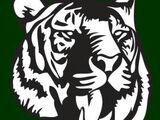 Salem Tigers