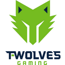 T-Wolves Gaminglogo square.png