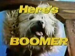 Here's Boomer .jpg