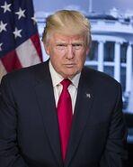 Donald Trump Real
