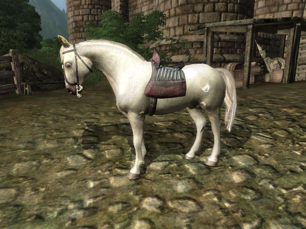My White Horse