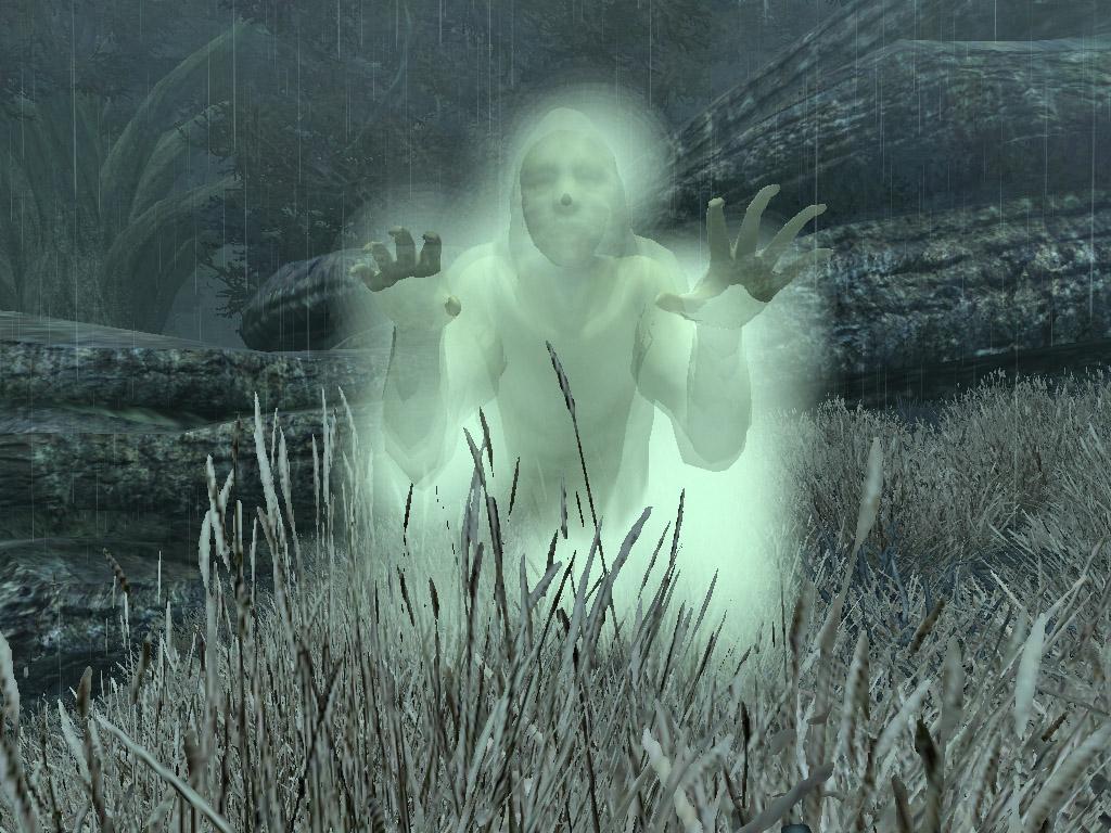 Dark Forest Spirit