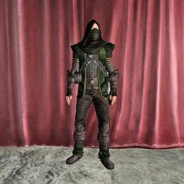 Ranger Armor male.jpg