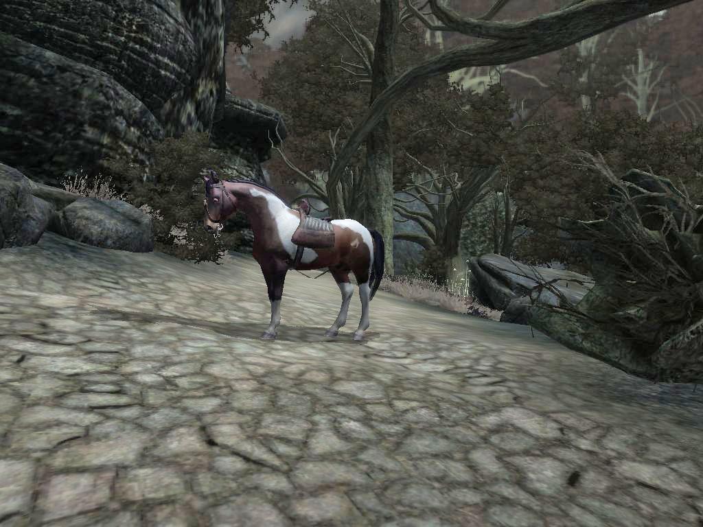 My Dappled Horse