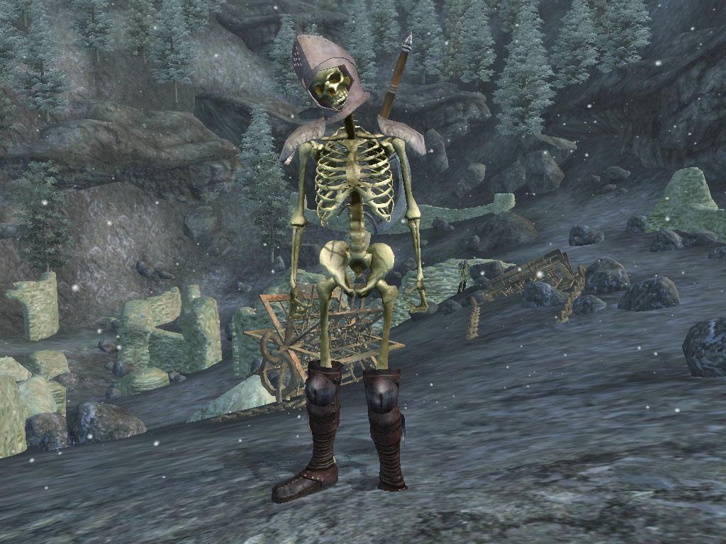Nord Skeleton