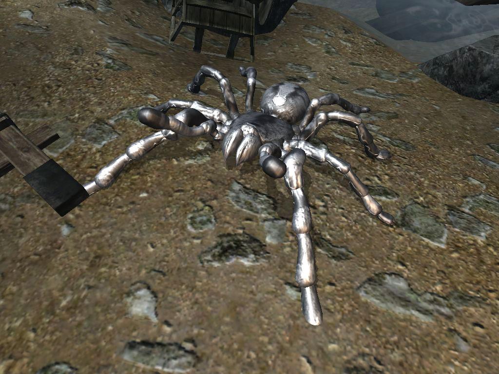 Northern Spider