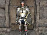 Templar's Armor
