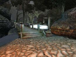 Dark Forest 11.jpg